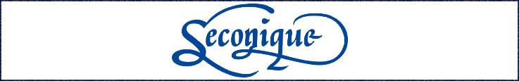 Compare prices and buy Seconique mattresses